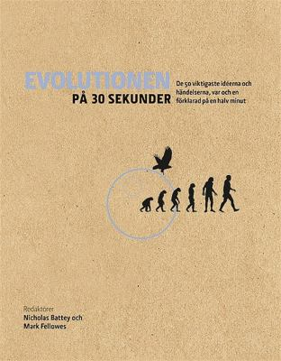 Evolutionen på 30 sekunder