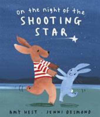On the night of the shooting star / Amy Hest ; illustrated by Jenni Desmond.